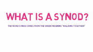 What is a synod
